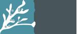 Toronto Memory Program Logo
